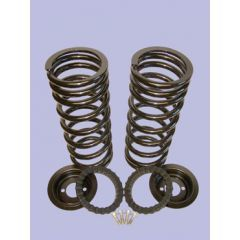 DA5136 - Britpart Standard Height Spring Conversion for Discovery 2 - Rear Kit; Two Springs with Spring Seats and Retainer Rings